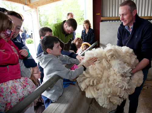 Airfield Estate - Fitzpatrick Castle holiday attractions