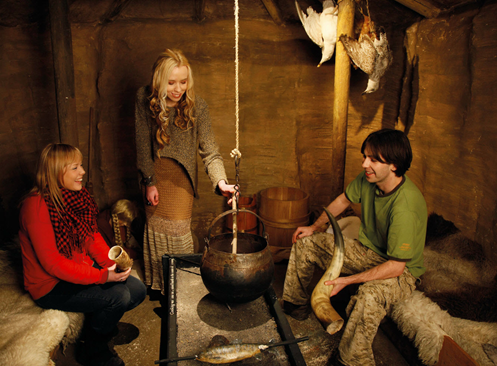 Dublinia - Viking Experience - Fitzpatrick Castle holiday attractions