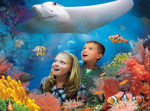 National Sealife Centre - Fitzpatrick Castle holiday attractions